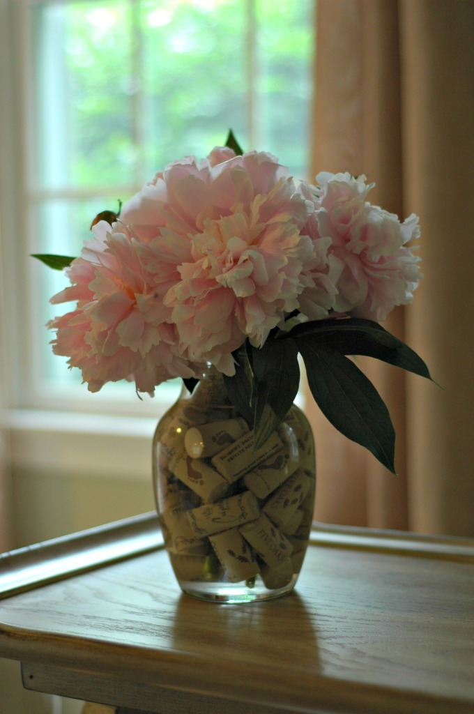 Peonies and Corks